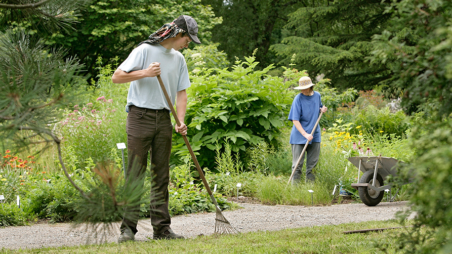 Two gardeners with sun hat and visor cap while working in the garden.